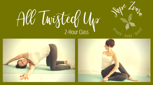 All Twisted Up: 2-hr functional movement guide to relieve spine and back pain and discomfort.